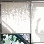 renovación de cortinas black out
